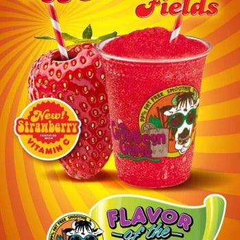 "Caribbean Creme Strawberry Fields Poster (24"" x 36"")"